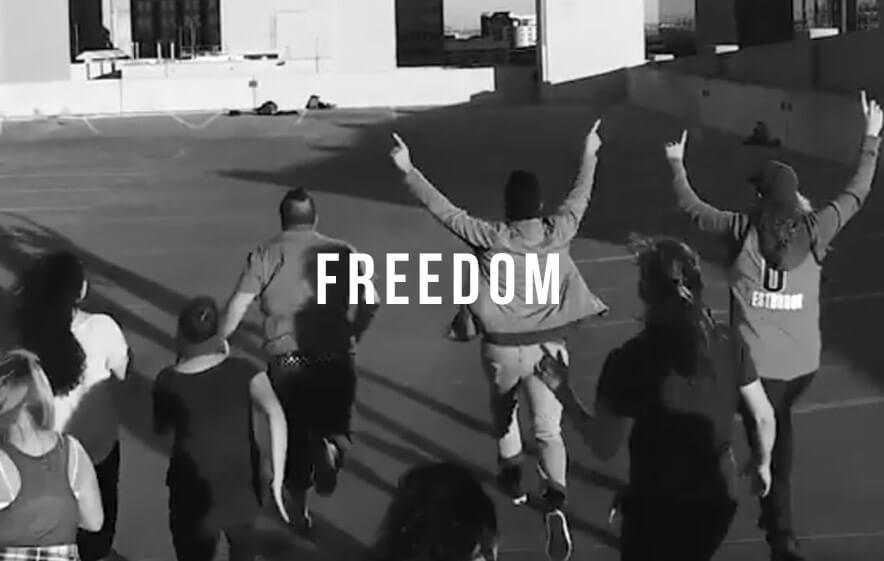 Freedom_Link-2